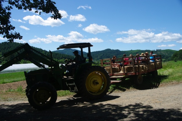 farmday