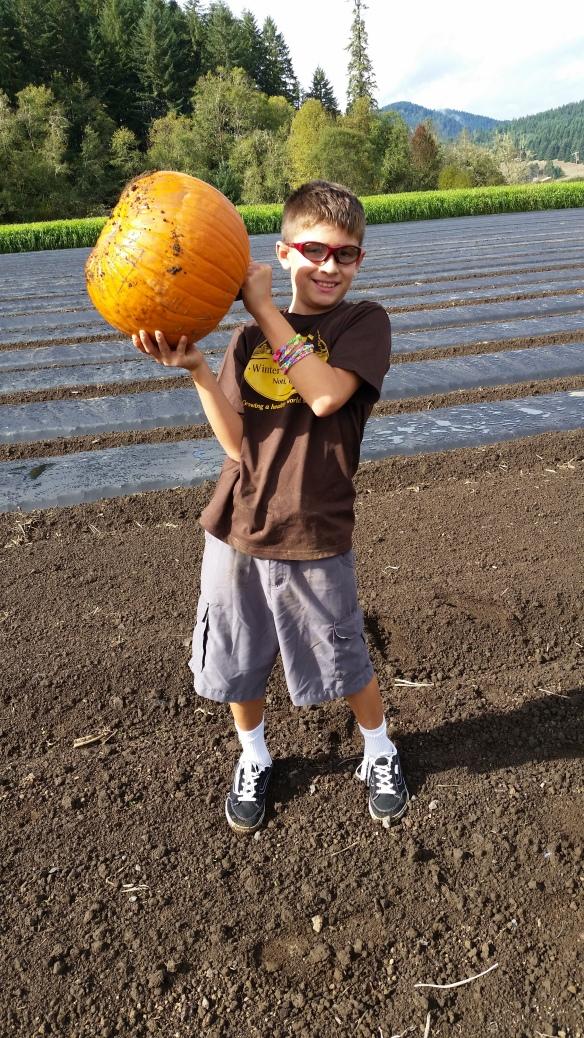 farm Ben pumpkin