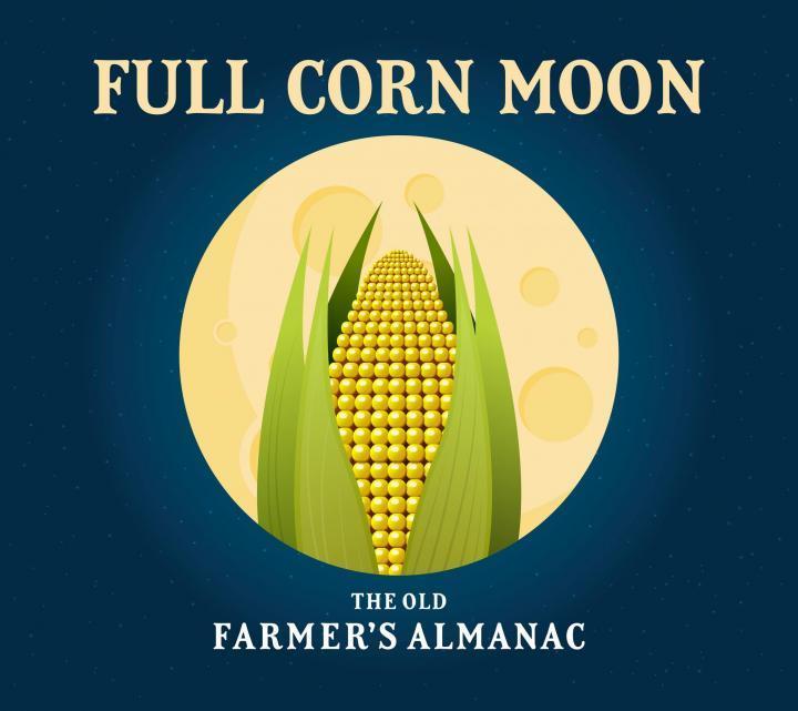 full_corn_moon_full_width